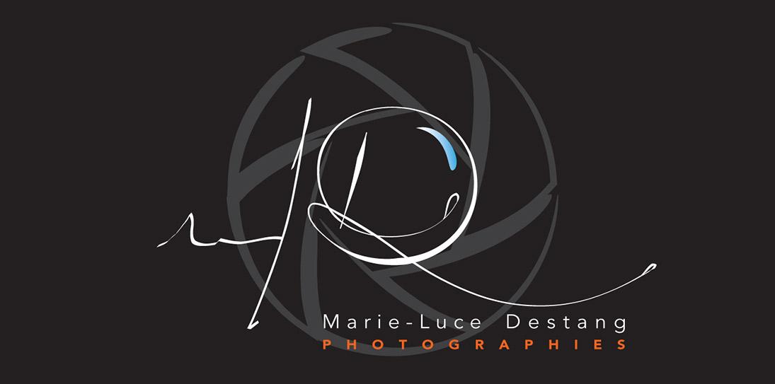 logo_destang